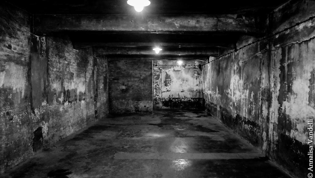 AnnalisaVandelli Auschwitz 001