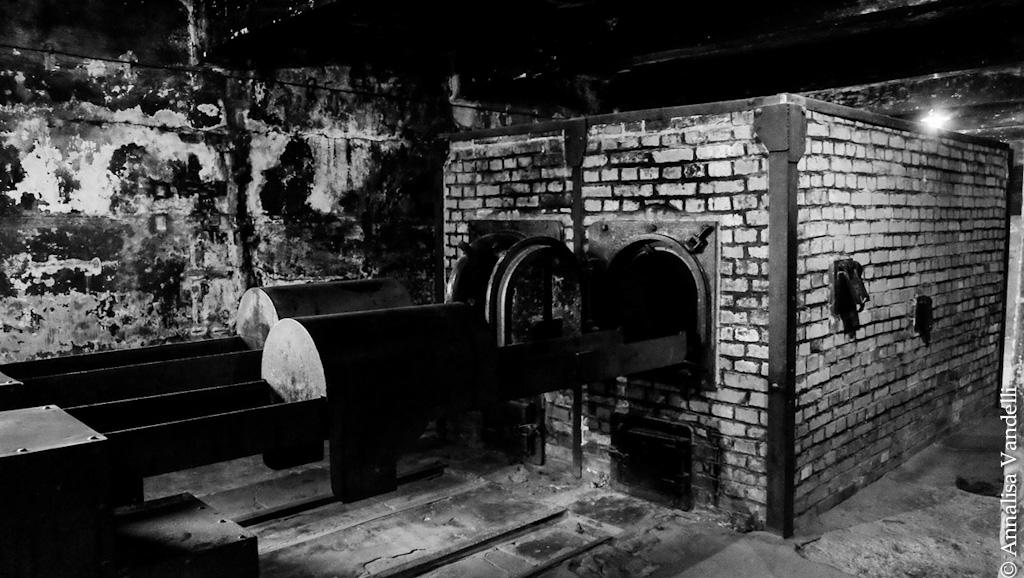 AnnalisaVandelli Auschwitz 002
