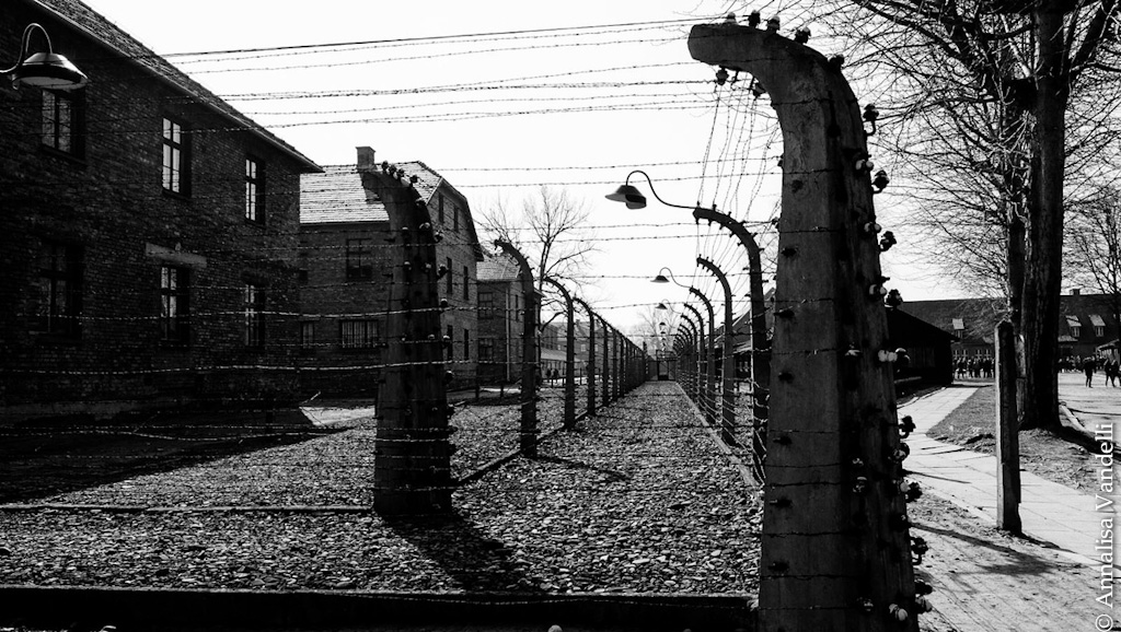 AnnalisaVandelli Auschwitz 003