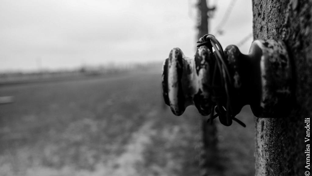 AnnalisaVandelli Auschwitz 008