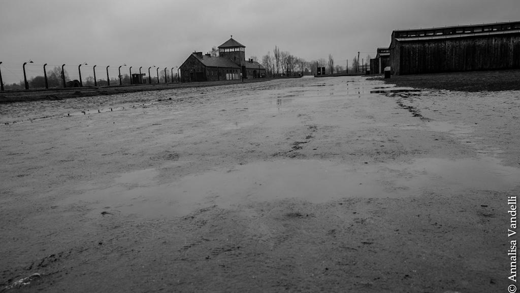 AnnalisaVandelli Auschwitz 010