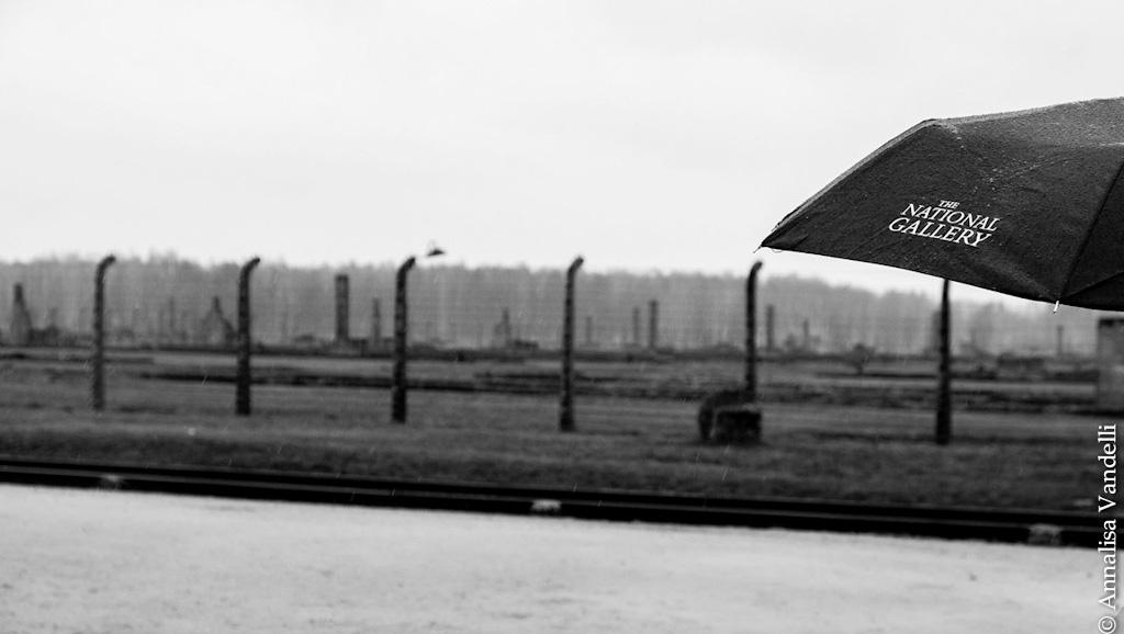 AnnalisaVandelli Auschwitz 011