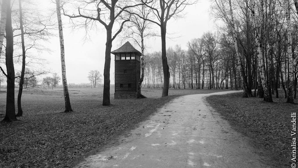 AnnalisaVandelli Auschwitz 016