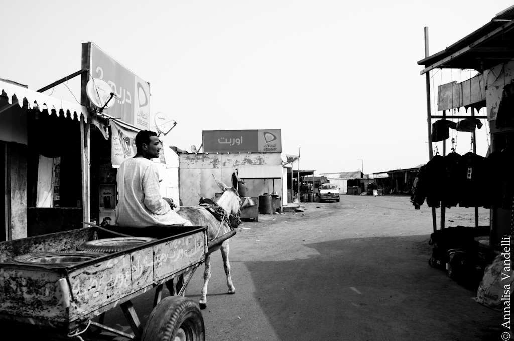 AnnalisaVandelli Egitto003