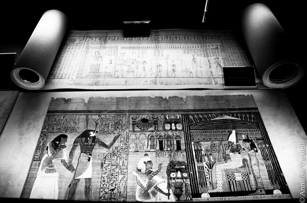AnnalisaVandelli Egitto014