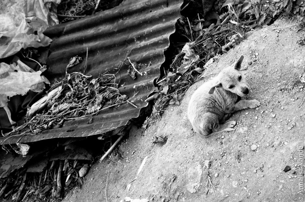 AnnalisaVandelli Guatemala 024