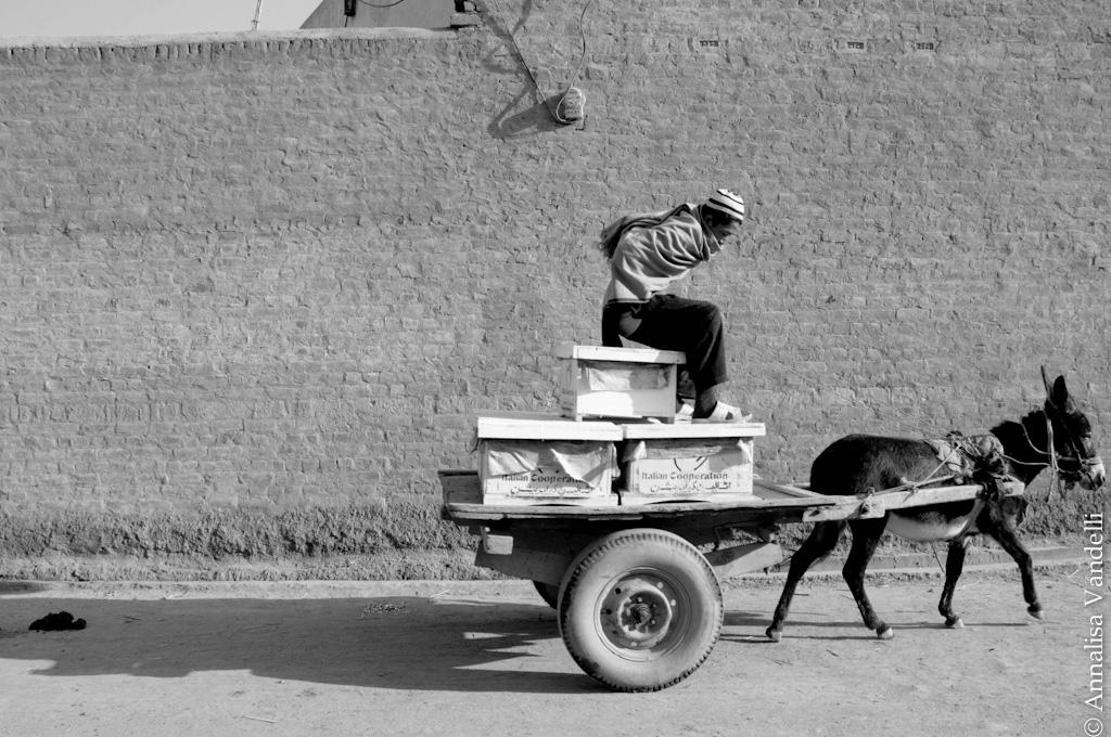 AnnalisaVandelli Pakistan 029